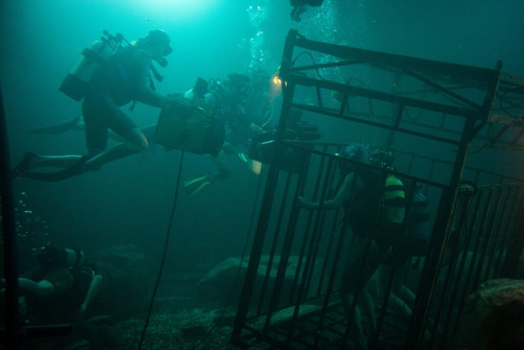 Behind the scenes image from 47 Meters down. Filming the shark cage underwater.